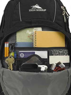 High Sierra Swerve Backpack with Premium Organizer