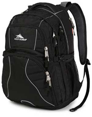High Sierra Swerve Laptop Backpack for Women