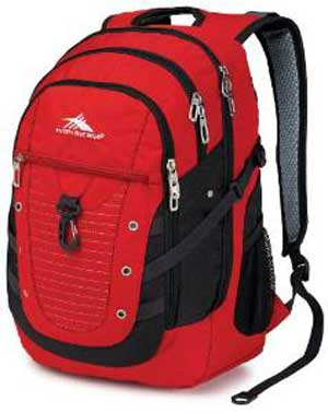 High Sierra Tactic Laptop Backpack