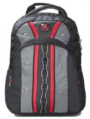 Ultimate Swiss Gear Backpack