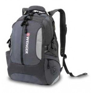 Wenger Backpack by SwissGear with Padded Sleeve for Laptops